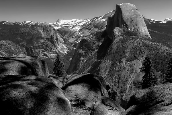 half dome w foreground.jpg