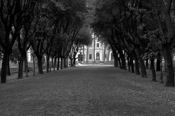 Borghese Path F (1 of 1).jpg