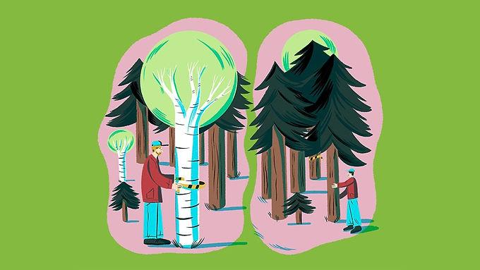 Skogsägare oroliga för äganderätten