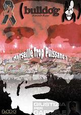 Bulldog French Fans 04