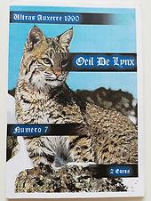 Oeil de Lynx 07