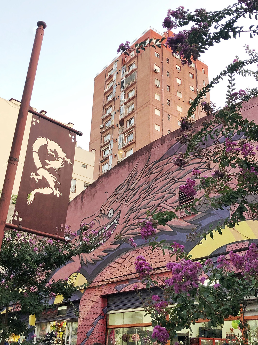 Chinatown Buenos Aires