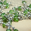Thumbnail: Fern & Mushroom Necklace