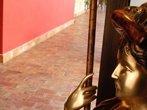 Teraforte Terracotta 125 x 250