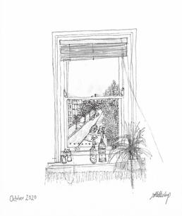 2020-32 - Lucy Millichamp - The view from my window.jpg