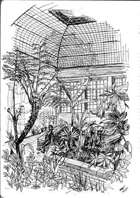 Natasha Jackson - Botanical Gardensrd