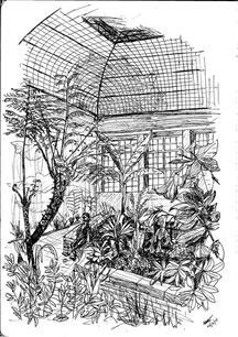 2017-16 Natasha Jackson - Botanical Gard