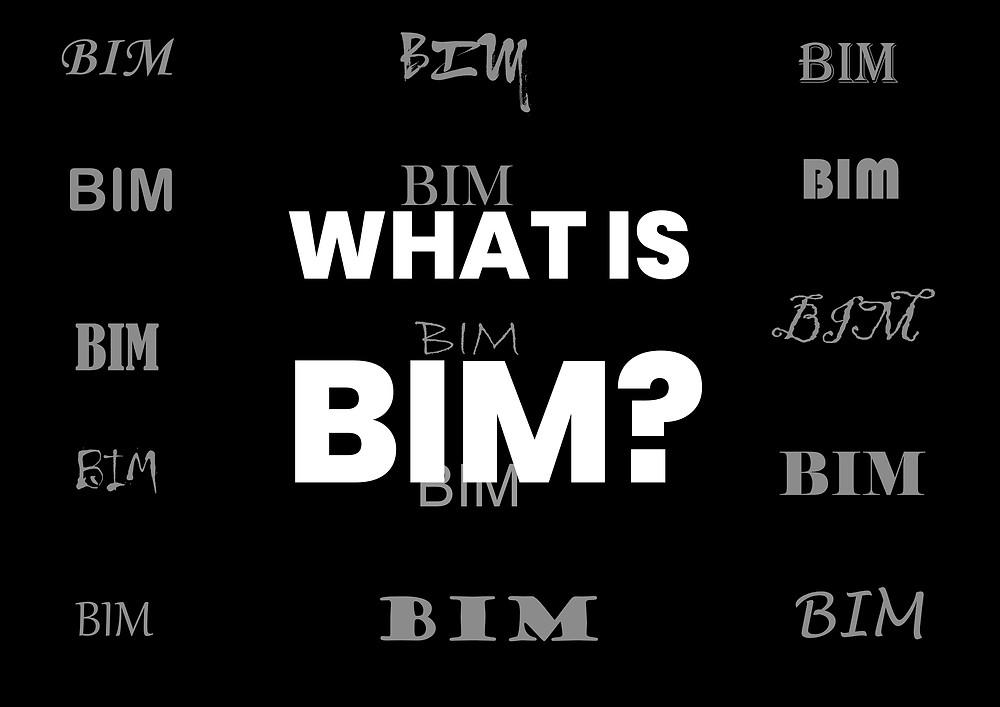 What is BIM?