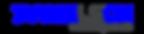 Logo_DanielSOH.png