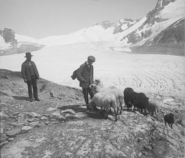 Rhone Glacier (A1683)