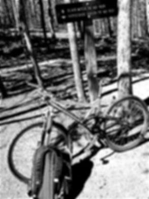 bikeblair1.jpg