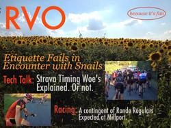 8-29_RVO_sunflower2