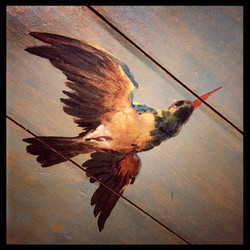 Detail plafondschildering in Buitenplaats Trompenburgh, 's Gravelande.