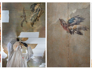 Vliegende vogels op plafonds Trompenburg!