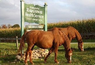 Home Complete Equine Health Service