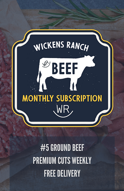 WR MONTANA BEEF  SUBSCRIPTION