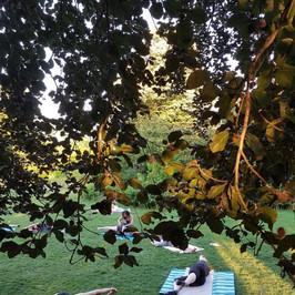 pilates yoga parc.jpg