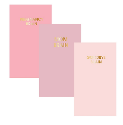 PREGNANCY BRAIN: Set of Three Lined Mini Journal