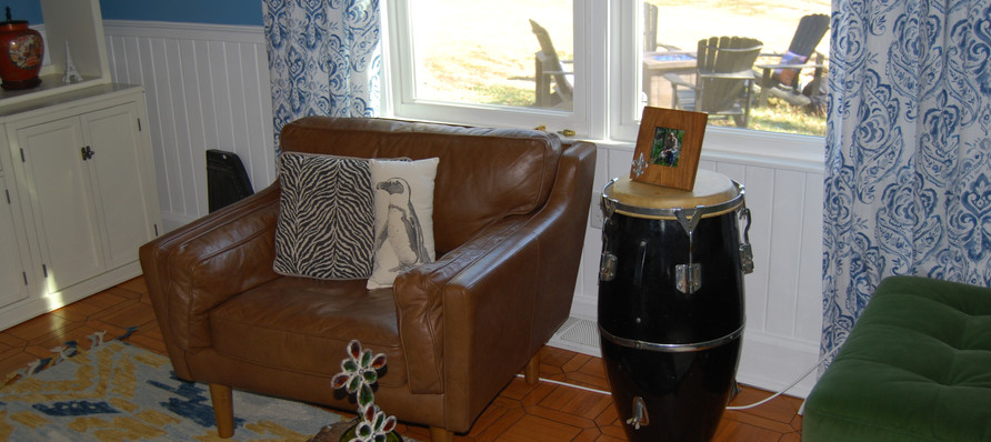 Den with Bongo Accent Table