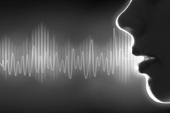 Сравнительные образцы голоса и речи