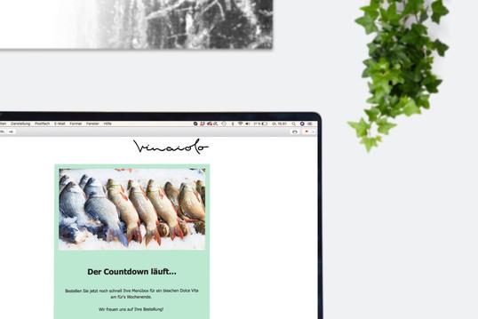 Vinaiolo Newsletter