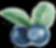 AdobeStock_104655659-4.png