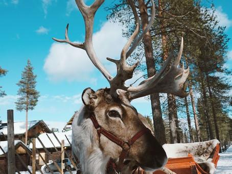 Hyvää joulua aus Finnland