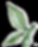 AdobeStock_89560744-3-web.png