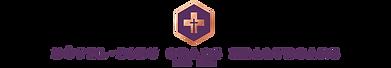 HDGD Logo.png