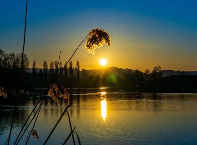 Bettenauer Weiher Sonne