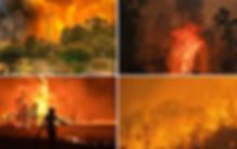 NSW-fires-2019.webp
