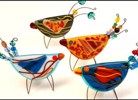 Birds Glass Project