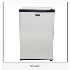 Lion Refrigerator.jpg