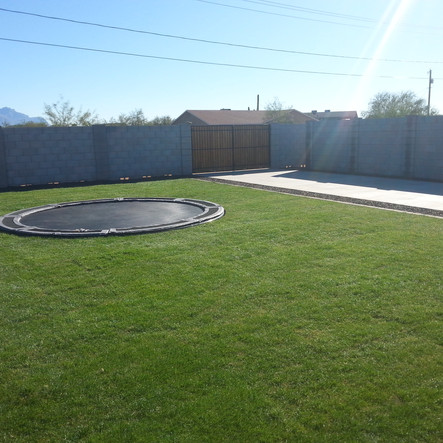 In Ground Trampoline with Sod and Irrigation Scottsdale AZ
