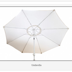 Lion Umbrella.jpg