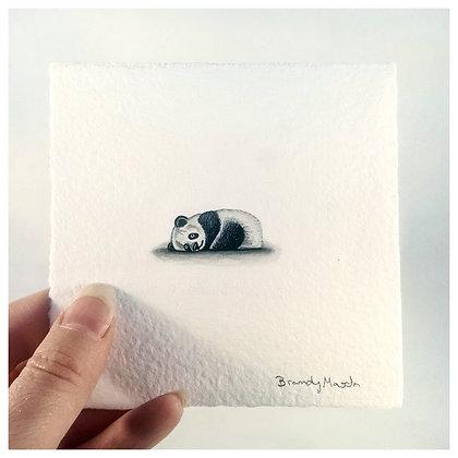 Panda Bear.  Original Miniature Painting.