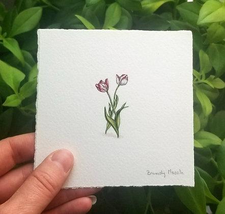 Tulips.  Original Miniature Painting.