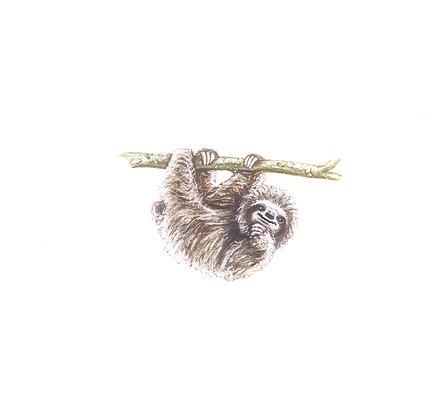 Sloth. Original Miniature Painting.