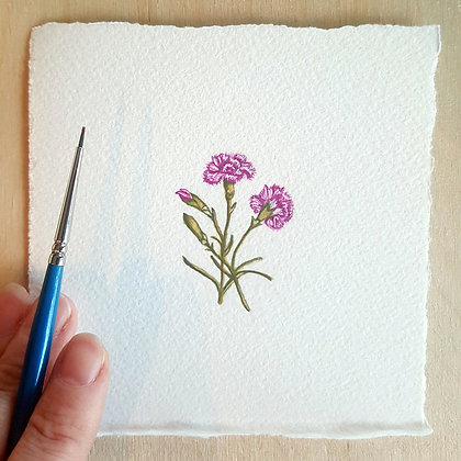 Carnations.  Original Miniature Painting.