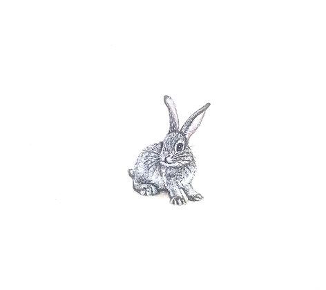 Bunny. Original Miniature Painting.