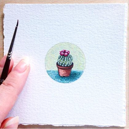 Potted Cactus.  Original Miniature Painting.