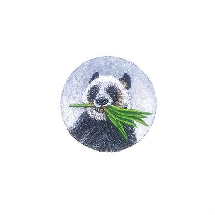 Panda Eating Bamboo.  Original Miniature Painting.
