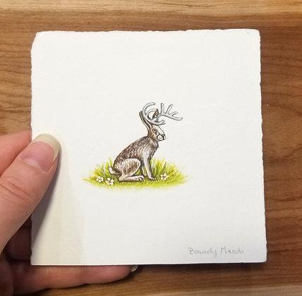 Jackalope. Original Miniature Painting.
