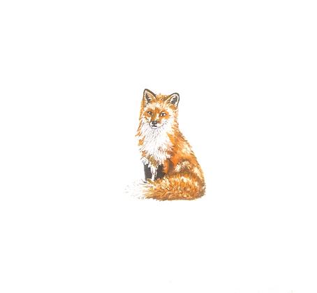 Fox.  Original Miniature Painting.