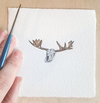 Moose Skull. Original Miniature Painting.