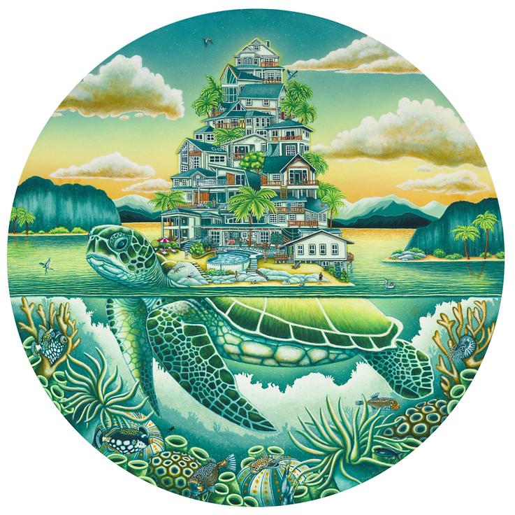 Turtle website info.png