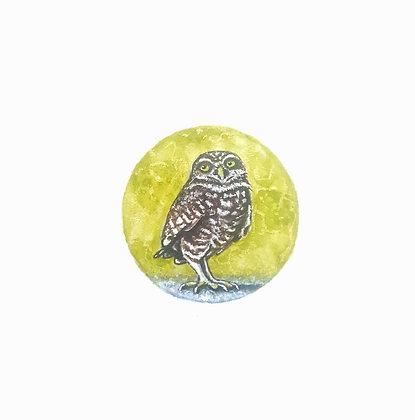 Burrowing Owl.  Original Miniature Painting.