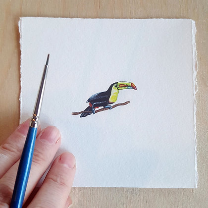 Toucan.  Original Miniature Painting.