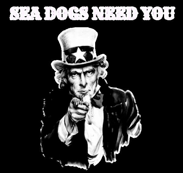 Sea Dogs Barbers Jobs, Sea Dogs Barbershop, Cornwall