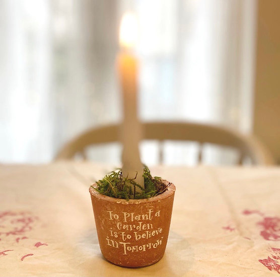 Time worn personalised Terracotta pots